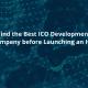 ICO-Development-Company